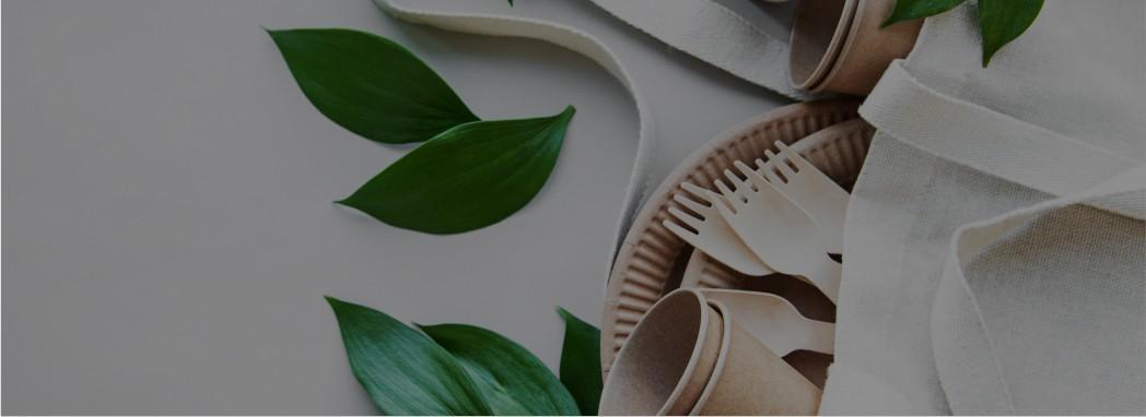 Productos Take away 100% ecológicos